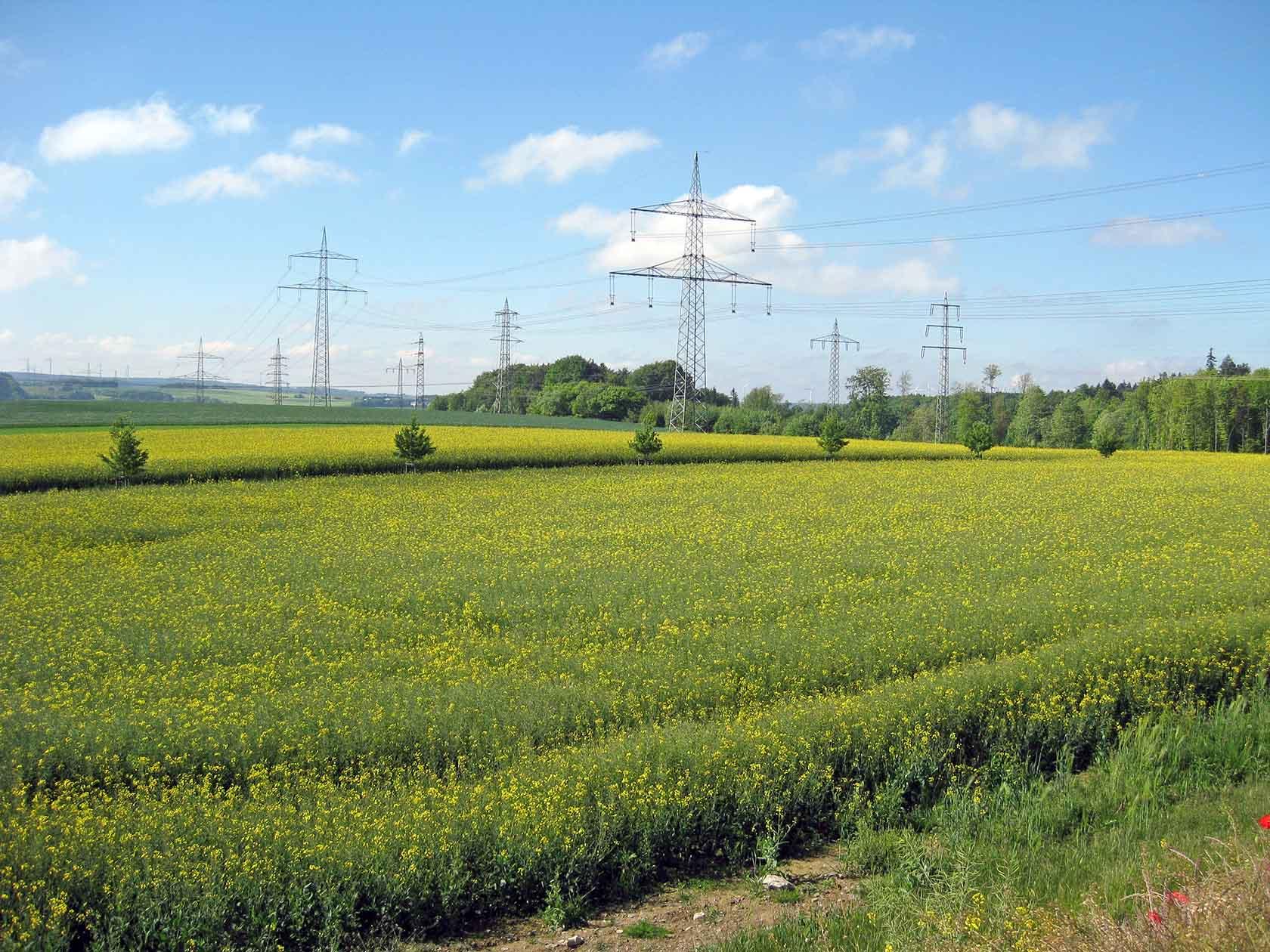 110 kV Freileitung