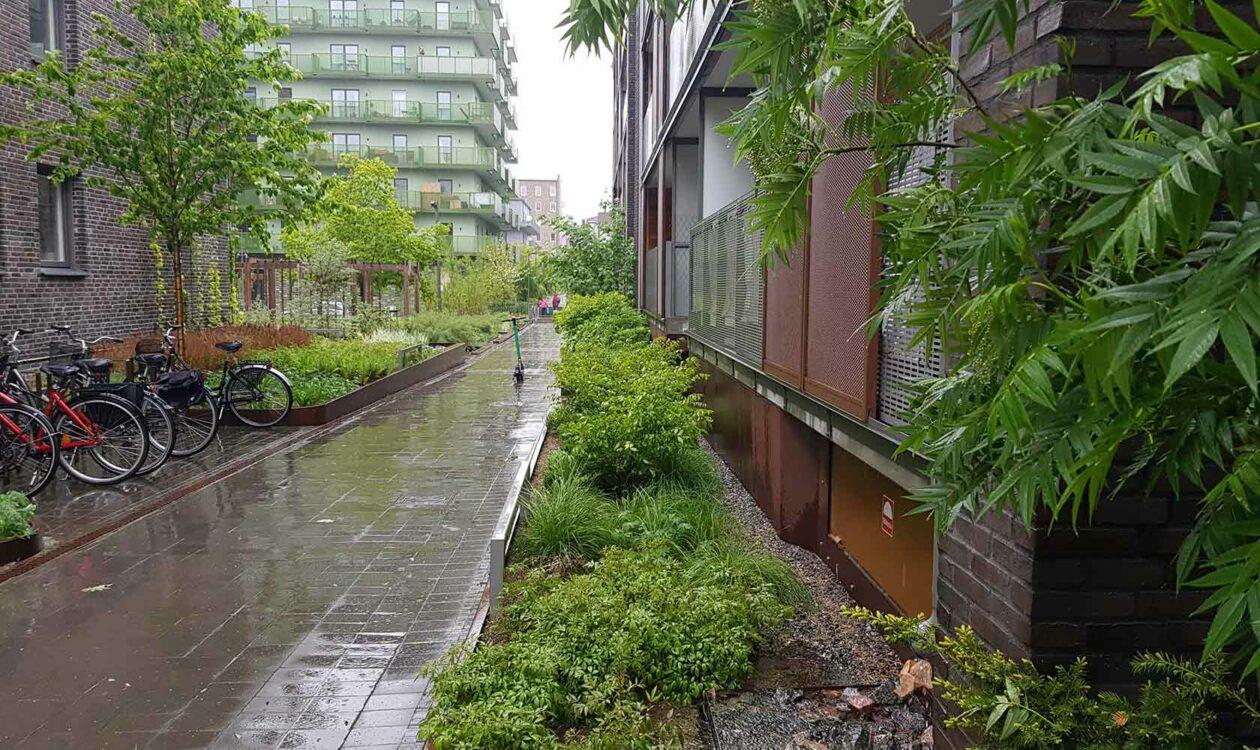 Healthy Water Cities